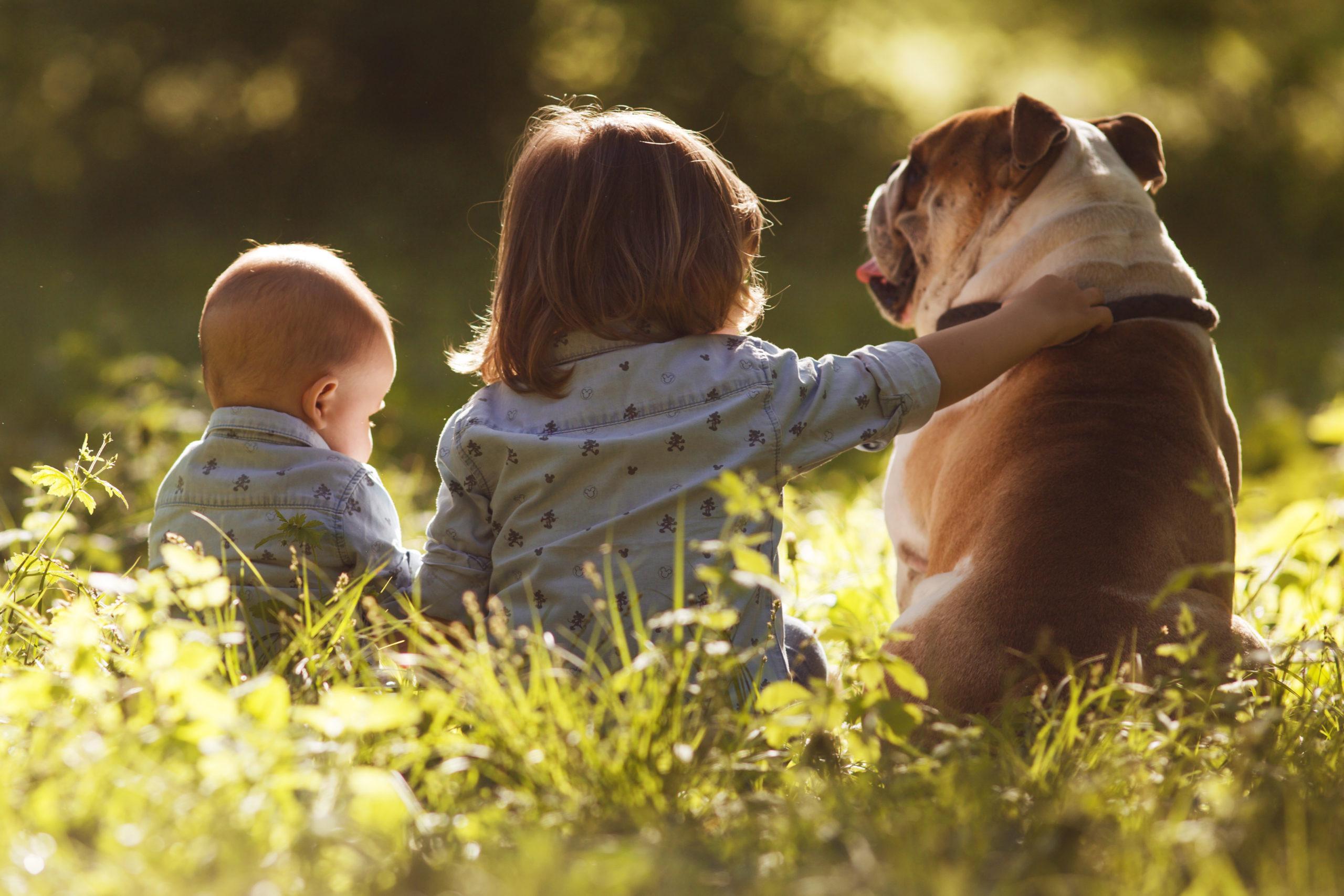 Copii si Familie